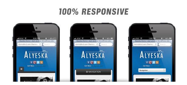 alyeska responsive onlineadrian