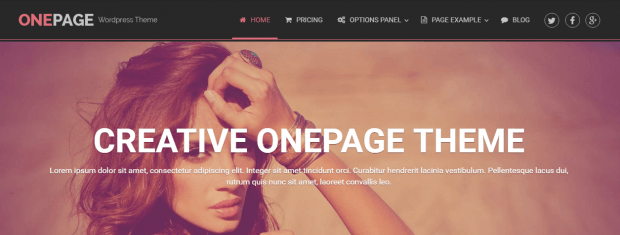 onepage wordpress theme review